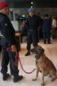 Anjing Pelacak di Rapat Paripurna Luar Biasa  DPR 3 Agustus 2009 (dwiki dok)