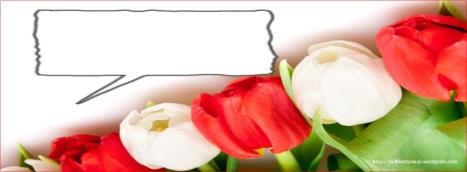 Sampul Keren Kronologi Facebook Jiwa Merah Putih Kosongan